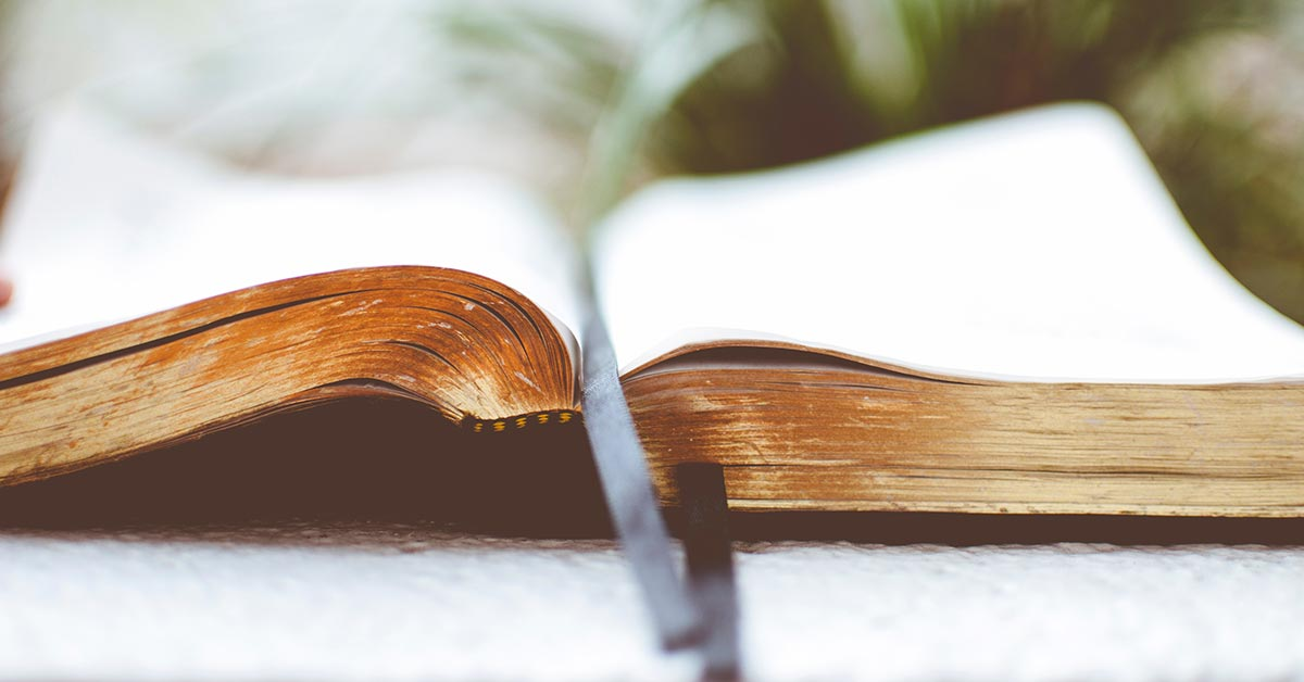 Would You Create Your Own Version of the Bible?